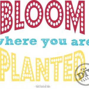 Bloom Where you are Planted - Printable