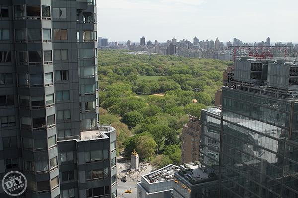 Central-Park-View