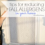 tips for reducing fall allergens in your home