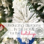 reducing allergens in the home for the holidays sq