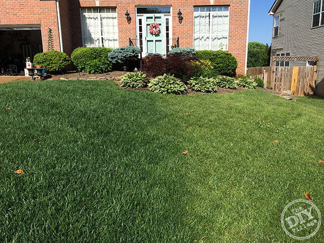 Lawn With Sta Green Weed Feed