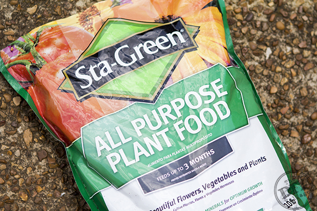 StaGreen Plant Food