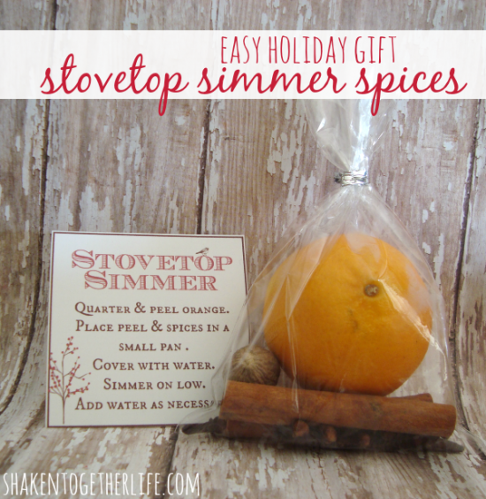stovetop-simmer-spices-easy-holiday-gift-shakentogether